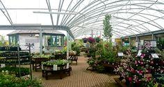 A large curved canopy was recently installed for Monkton Elm Garden Centre covering Garden Center Displays, Garden Centre, Flower Nursery, Plant Nursery, Nursery Layout, Garden Pond, Visual Merchandising, Canopy, Display Ideas