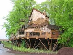 The Alnwick Garden Tree House is a Photo Op in NBL. Plan your road trip to The Alnwick Garden Tree House in NBL with Roadtrippers. Alnwick Treehouse, Treehouse Hotel, Alnwick Castle, Beautiful Tree Houses, Cool Tree Houses, Tiny Houses, Wooden Houses, Garden Tree House, Garden Trees