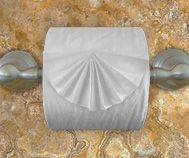 origami toilet paper, kind of cool, but won't last long, lol