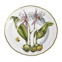 Manteiga De Cerâmica 2 Peças Prato Rooster Com Maçãs E Uvas Impressionante!!!