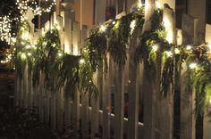 NINE + SIXTEEN: The Christmas Season Has Arrived...