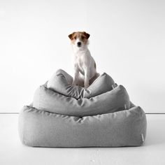 11 pet beds that aren't the ugliest on domino.com