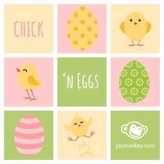 What came first, the chicken or the egg? Who cares because these new Chick 'n Egg overlays are just so darn cute!