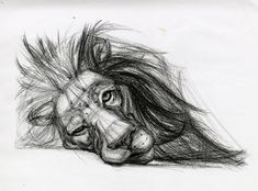 Drawings animal drawings, drawing animals, lion drawing, sketches of animal Pencil Sketches Of Animals, Cool Pencil Drawings, Animal Drawings, Easy Drawings, Drawing Sketches, Drawing Ideas, Sketching, Drawing Animals, Lion Drawing Easy