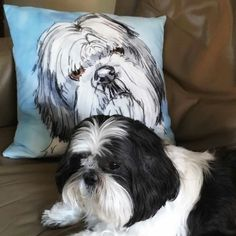 This little dogs mums loves her surprise gift of a pet portrait cushion...  Too cute...
