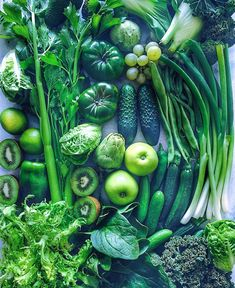 photography fruit green ideas 2019 for 52 Fruit photography green 52 Ideas for 2019 Fruit photography green 52 Ideas for can find Vegetables photography and more on our website Green Fruits And Vegetables, Fruit And Veg, Fresh Fruit, Fruits And Vegetables Pictures, Vegetables List, Vegetables Photography, Fruit Photography, Fruit Sculptures, Greens Recipe
