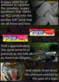 16 Insane Facts About the Making of Everyday Products Slideshow   Cracked.com