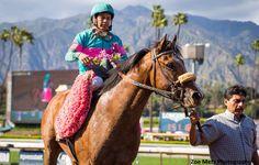 Gormley wins the Santa Anita Derby. He's my derby horse. I love him!