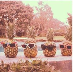 All eyes are on National #Pineapple Month.