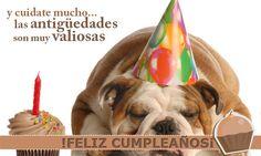 feliz cumpleaños amiga - Buscar con Google