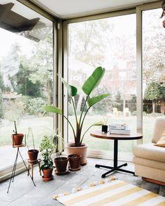 Antonia Schmitz (@craftifair) • Instagram-Fotos und -Videos Deco, Lotta, Instagram, Plants, Anna, Videos, Mom, Small Bedrooms, Homes