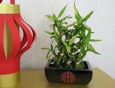 Red Lantern Sf Chinese Food