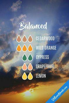 Balanced. Cedarwood, orange, Cypress, grapefruit, lemon