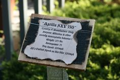 An Italian Motorcyle adds to the collection: the Aprilia SXV 550.  This informative signage appeared beside each Motorcycle fashioned with cedar base, black burlap accent and wire wrap.