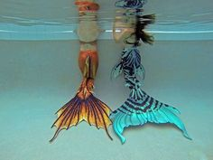 Mermaid Raven and Halifax mermaid Raina showing off their equally gorgeous Merbella Studios silicone mermaid tails!