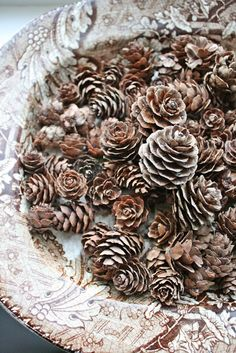 I love small pine cones and have a display year round...VIBEKE DESIGN: Naturens vakre kongler små...