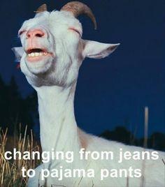 Hahahaha yep!!