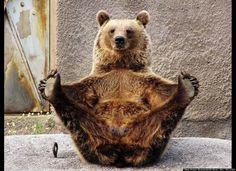 Séance de yoga...