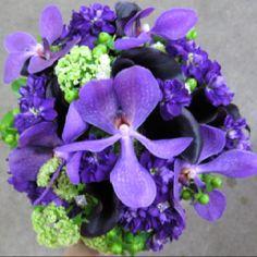 So many purple & green possibilities