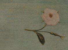 Venus Roses, Venus Fly Trap Terrarium, Venus Tattoo, Fly Traps, Renaissance Art, Pretty Art, Art Inspo, Crafts, Painting