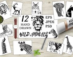 """Check out new work on my @Behance portfolio: """"Hand drawn wild animals"""" http://be.net/gallery/57686415/Hand-drawn-wild-animals"""