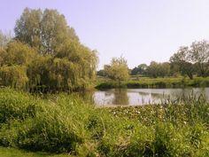 Powderham Castle Gardens, Exeter, UK.
