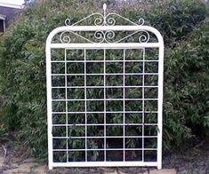 'Vanessa' pa gate with farm mesh and wrought iron scrolls.
