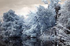 Il magico lago nella foresta incantata by Francesco Del Bravo @ http://adoroletuefoto.it