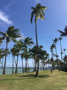 Shangri La Fiji Shangri La Fiji, To Go, Holidays, Adventure, World, Beach, Places, Water, Travel