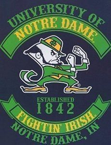 Ncaa Notre Dame Fighting Irish Rebel Raschel Throw Blanket, x Blue, As Shown College Football Players, Football Baby, Notre Dame Wallpaper, Notre Dame Apparel, Noter Dame, Dallas Cowboys Quotes, Bad Candy, Notre Dame Irish, University O
