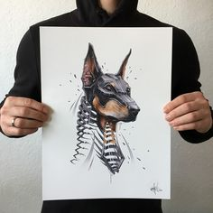 Doberman Dog. Slice Animal Portraits in Stylised Looks. By JAYN ABS-Crew.