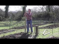 ▶ WIRE FRAME SUPPORT FOR FRUIT GROWING - YouTube