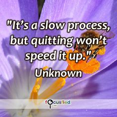 """""""It's a slow process, but quitting won't speed it up."""" #quote #inspire #motivate #inspiration #motivation #lifequotes #quotes #youareincontrol #dontquit #persistence #dontgiveup #sotrue #courage #wisdom #focusfied #perspective"""