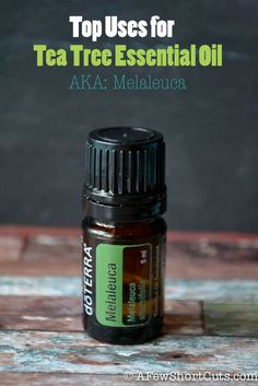 Top uses for Tea Tree Essential Oil AKA Melaleuca #health #natural
