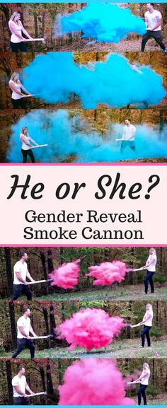 Gender Reveal Partie