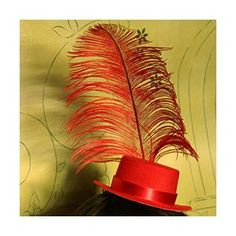 Top your outfit with a hat and feathers.