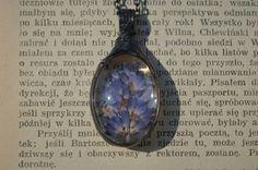 real lavender necklaceterrarium necklacereal by ZokaKurylov