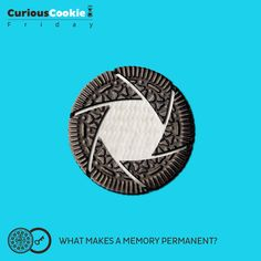 Say cheese. But eat Oreo. #Friday #CuriousCookie #History