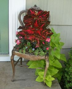 Vintage chair used as a planter
