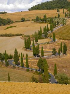 The road from Pienza to Montichiello in Tuscany, Italy. This road looks really tempting - The most famous road of Tuscany by stereosimo, via Flickr