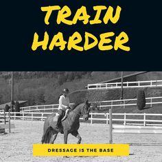 Dressage, Train Hard, Horse, Reining Horses