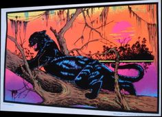 jungle cat 1973.jpg (1384×1005)