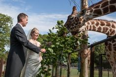Image detail for -Unusual wedding venues are the latest fashion for married couples-to-be – with anywhere from a zoo setting to a film studios under consideration. Across Bucks and ...