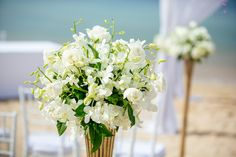White roses and white orchid aisle decoration