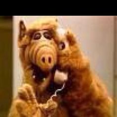 Alf, loved that show !