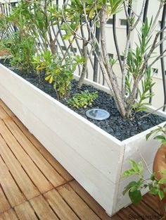 Skinny planters! Perfect for the front of the house!