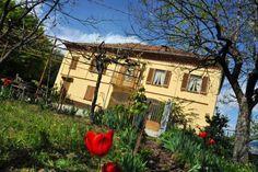 house in piedmont 7