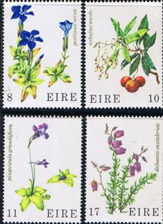 Eire Ireland 1978 Wild Flowers Set Fine Mint SG 421/4 Scott 428/31 Other European and British Commonwealth Stamps HERE!