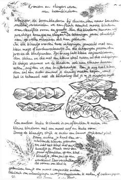 herfstknutsel 8 Nature Table, Mabon, New Trends, Bullet Journal, Rudolf Steiner, September, Autumn, Crafts, Inspiration
