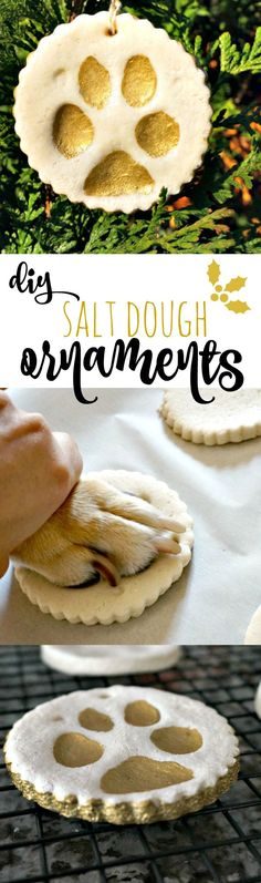 Celebrate your pet this holiday season with this easy recipe DIY Pup Paw Salt Dough Ornaments. It's so easy, Katie can do it! :) #ad #ToPetsWithLove